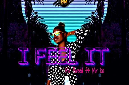 Mr Breed ft. Mr Do_I Feel It(prod. by MB)