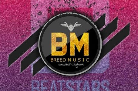Free Beats_Adwoa Rhythm_(prod. by Mr Breed)